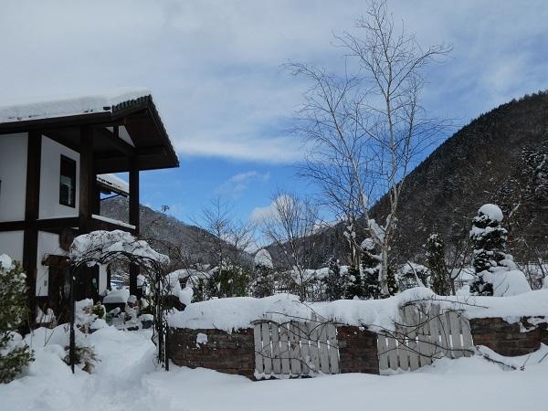 いつもの冬景色_e0365880_22535966.jpg