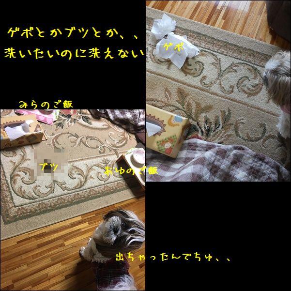 e0234881_17162938.jpg