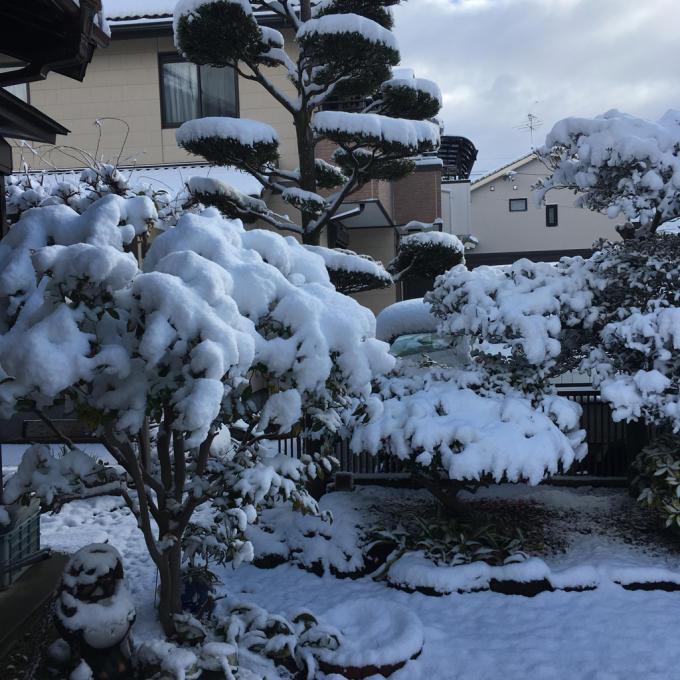 久しぶりの積雪となりました ε-(´∀`; )_f0349583_10550531.jpg