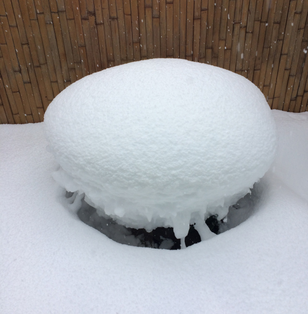 雪、雪、雪★_c0145608_17264343.jpg