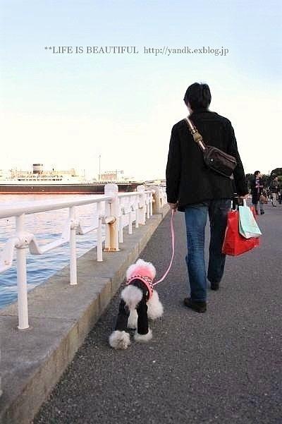 ハマ散歩②_d0083623_1725375.jpg