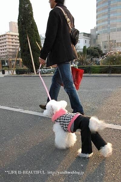 ハマ散歩②_d0083623_1755243.jpg