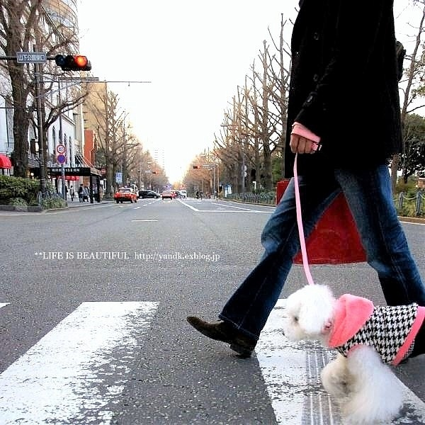 ハマ散歩②_d0083623_1785215.jpg