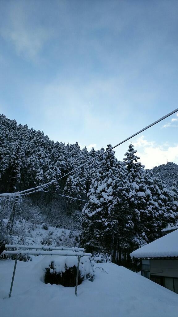 1/16 (月) 雪降ってます!_a0272042_12421929.jpg