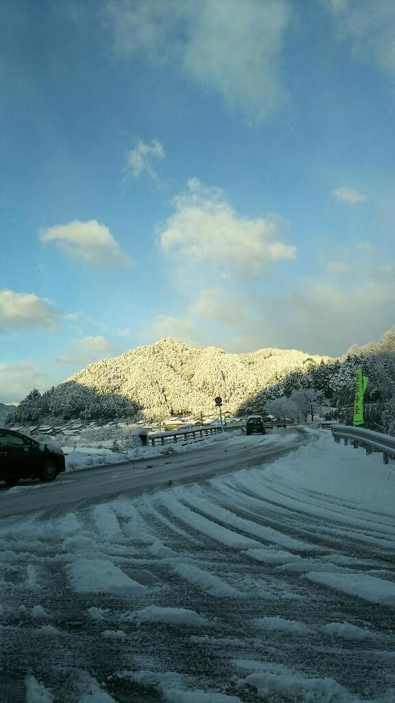 1/16 (月) 雪降ってます!_a0272042_12422428.jpg