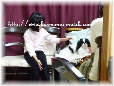 ピアノ教室☆勉強会☆テーマは・・_d0165645_10303857.jpg