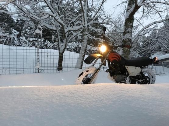 大寒波到来 雪遊び!この寒さアウター特集!!_e0297245_17350272.jpg