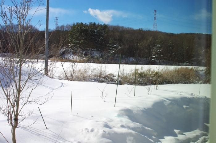 冬景色_c0110869_1322120.jpg