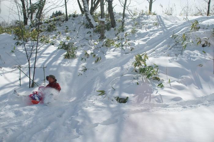 冬景色_c0110869_1325018.jpg