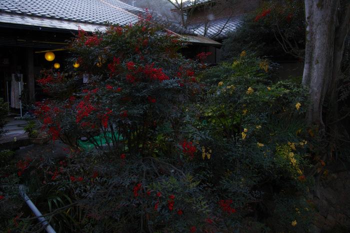 京都    1/14 雪なんかないやんの巻_f0021869_22450844.jpg