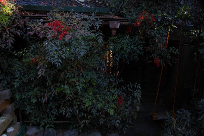 京都    1/14 雪なんかないやんの巻_f0021869_22452421.jpg