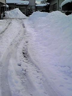 大雪です_f0253303_1452282.jpg