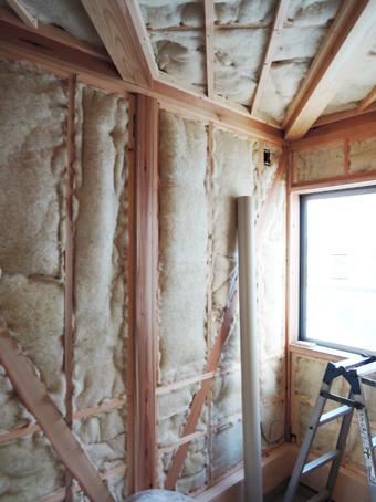 稲田堤の家の外壁はリシンかき落し_c0195909_12264344.jpg