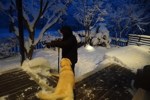 雪を楽しんでます_e0192217_20034214.jpg