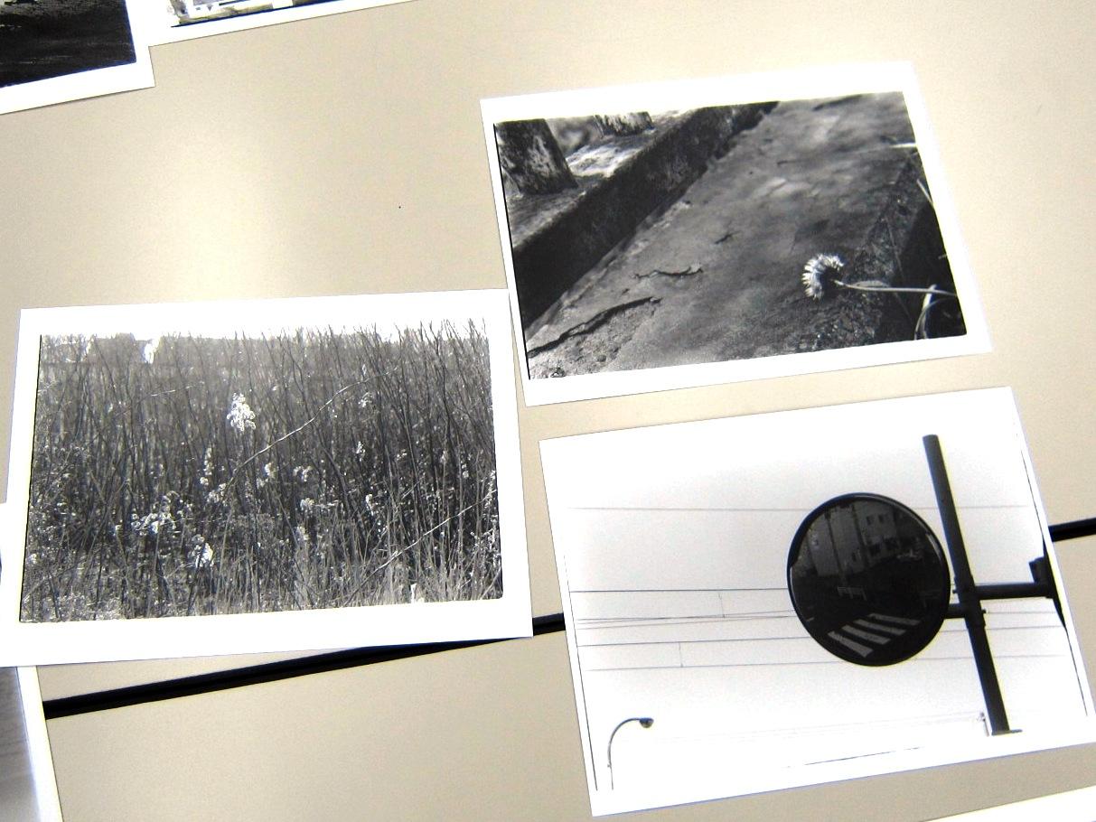 2542)「丸島均と100枚のスナップ写真を見る会 ~篠原奈那子 の場合」かでる2・7 終了/7月9日(土)14:00~_f0126829_16591373.jpg