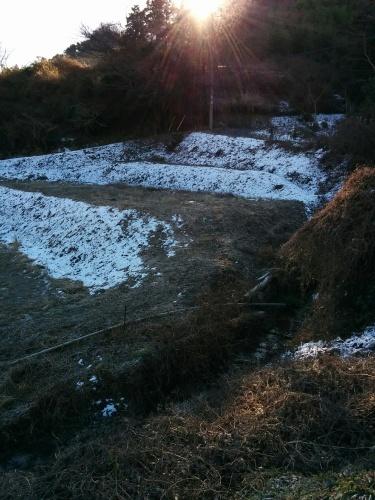雪景色_e0085133_10454919.jpg
