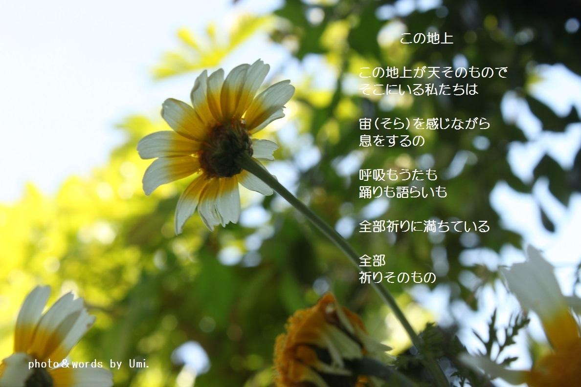 f0351844_20064832.jpg