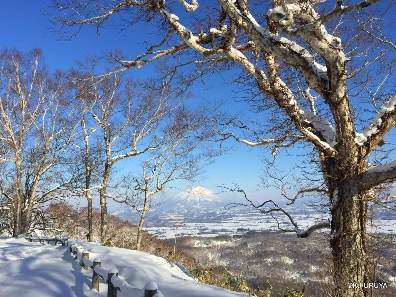 雪の北海道 3 洞爺湖_a0092659_22463831.jpg