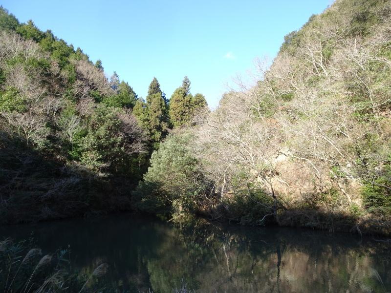 クヌギ谷の伐採・・・孝子の森  by  (TATE-misaki)_c0108460_20314696.jpg