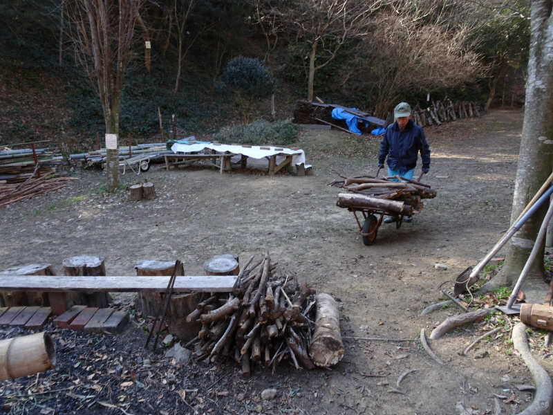 クヌギ谷の伐採・・・孝子の森  by  (TATE-misaki)_c0108460_20401907.jpg