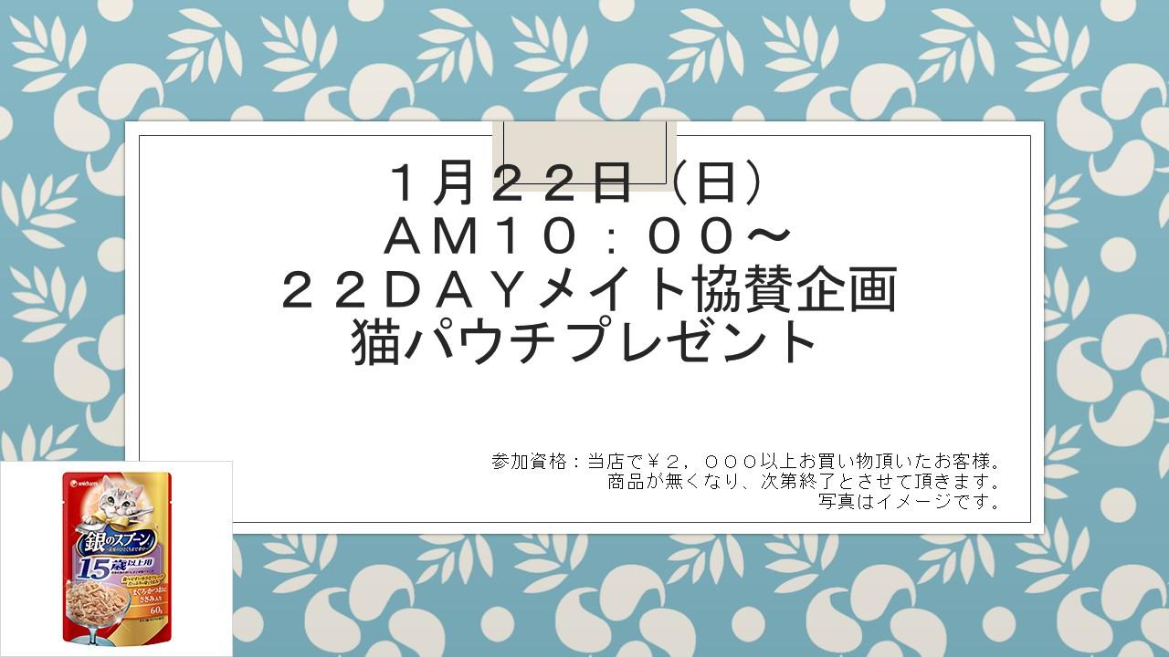 170117 猫の日イベント告知_e0181866_8462285.jpg