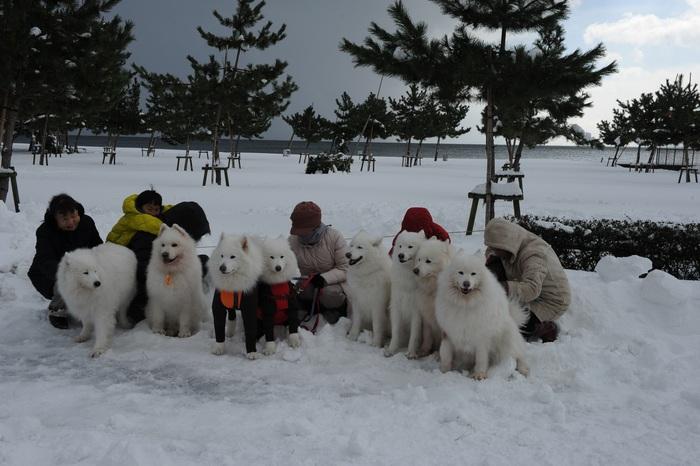 豪雪キャンプ♪ 2_a0049296_1925215.jpg