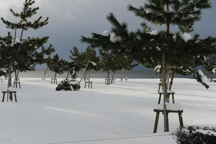 豪雪キャンプ♪ 2_a0049296_1985928.jpg