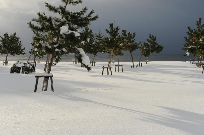 豪雪キャンプ♪ 2_a0049296_1991518.jpg