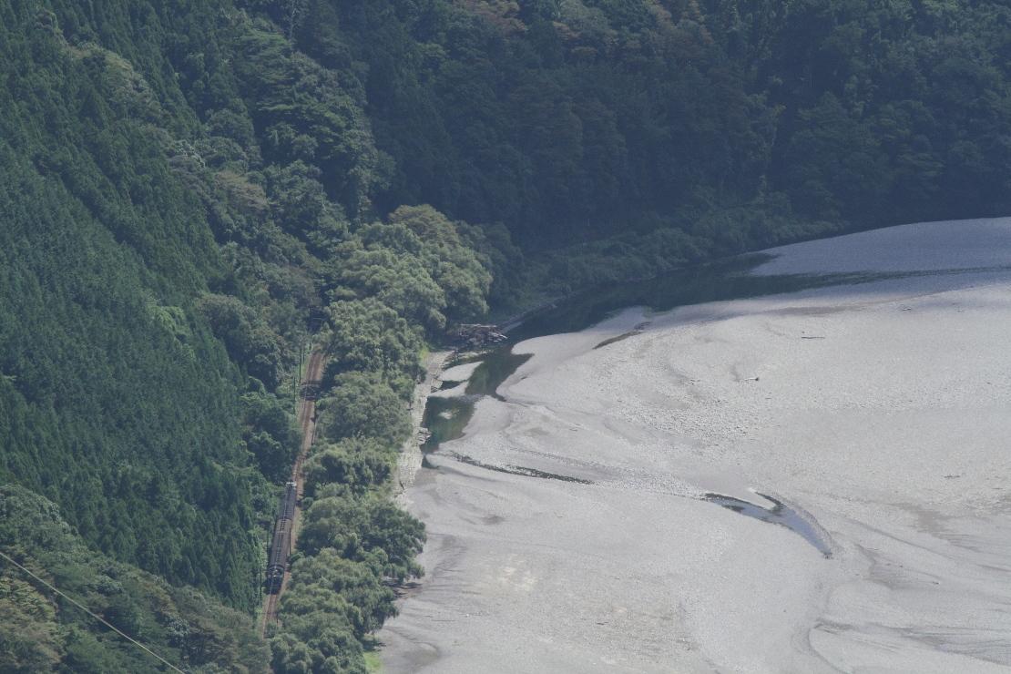濃い緑に溶け込む - 2016年・大井川 -  _b0190710_224296.jpg