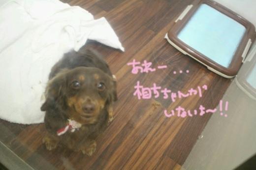 ドラマ_b0130018_00172840.jpg