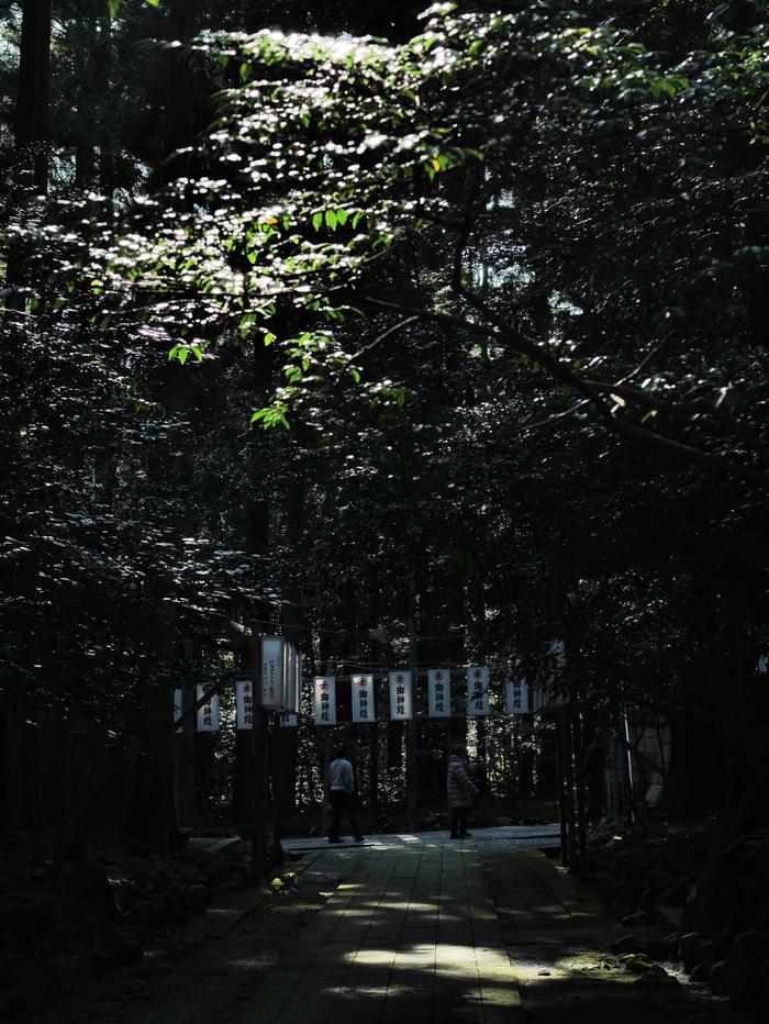 彌彦、光と影2_e0169421_2055561.jpg