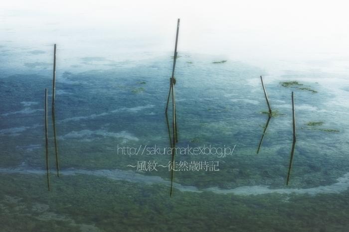 忘れ去られた海田。 (写真部門)_f0235723_215062.jpg