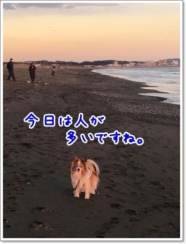d0013149_00491511.jpeg