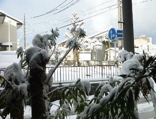 愛知県「最適運用委員会」への国交省の「回答」_f0197754_10291759.jpg