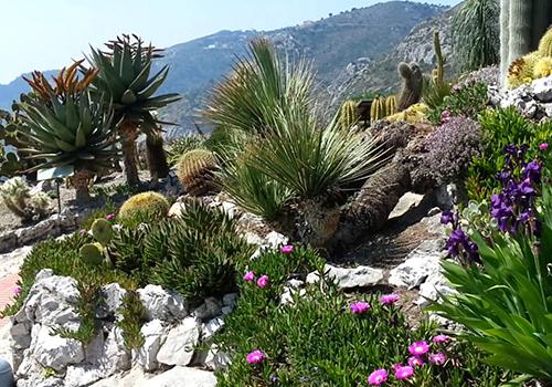 《ベストシーズンのフランス庭園巡り》の特設ホームページができました!!!_e0356356_10412121.jpg