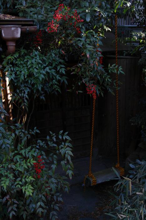 京都    1/14 雪なんかないやんの巻_f0021869_22084908.jpg