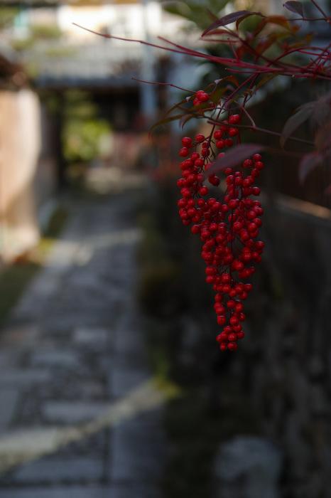京都    1/14 雪なんかないやんの巻_f0021869_22102221.jpg