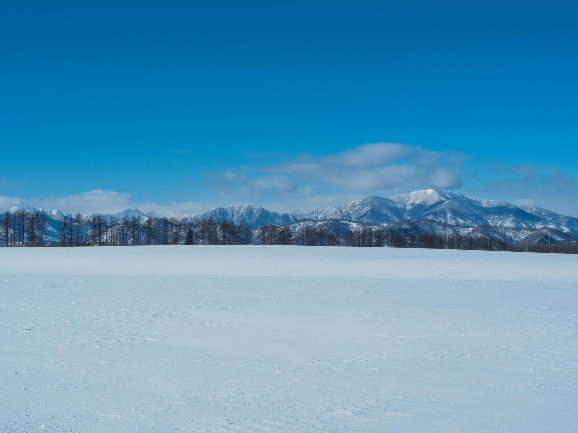 十勝らしい冬の快晴・・見渡す限り真っ白な雪原と日高山脈_f0276498_17391133.jpg