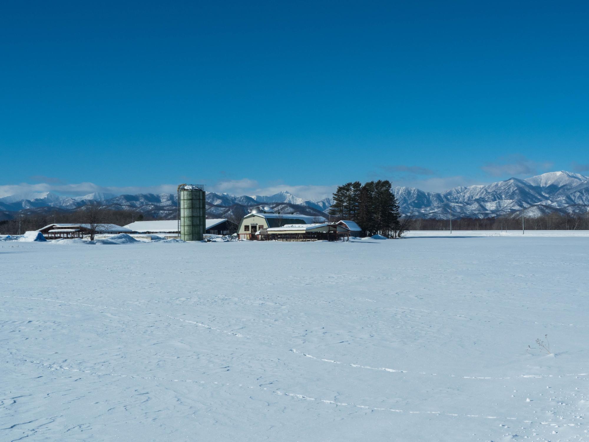 十勝らしい冬の快晴・・見渡す限り真っ白な雪原と日高山脈_f0276498_17393173.jpg