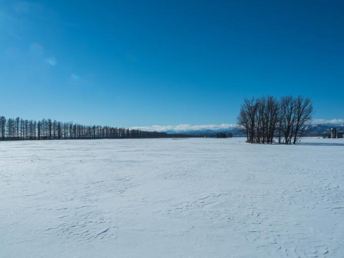 十勝らしい冬の快晴・・見渡す限り真っ白な雪原と日高山脈_f0276498_17395266.jpg