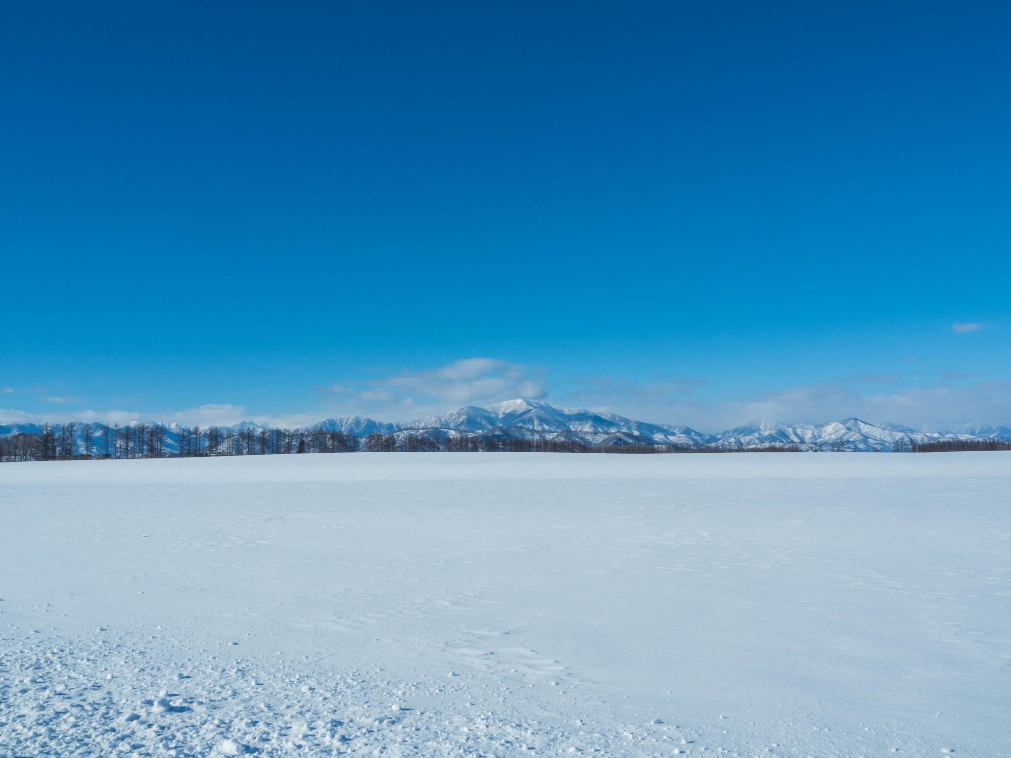 十勝らしい冬の快晴・・見渡す限り真っ白な雪原と日高山脈_f0276498_17403262.jpg