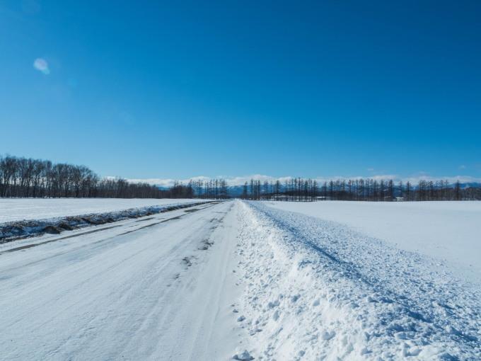 十勝らしい冬の快晴・・見渡す限り真っ白な雪原と日高山脈_f0276498_17405177.jpg