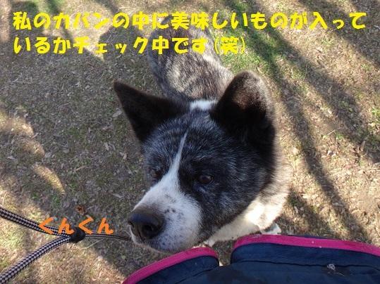 f0121712_22124092.jpg