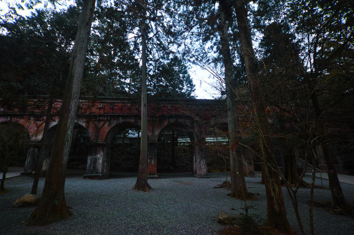 京都    1/14 雪なんかないやんの巻_f0021869_17404538.jpg
