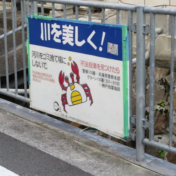 中大安亭商店街(のみ)_c0001670_20250365.jpg