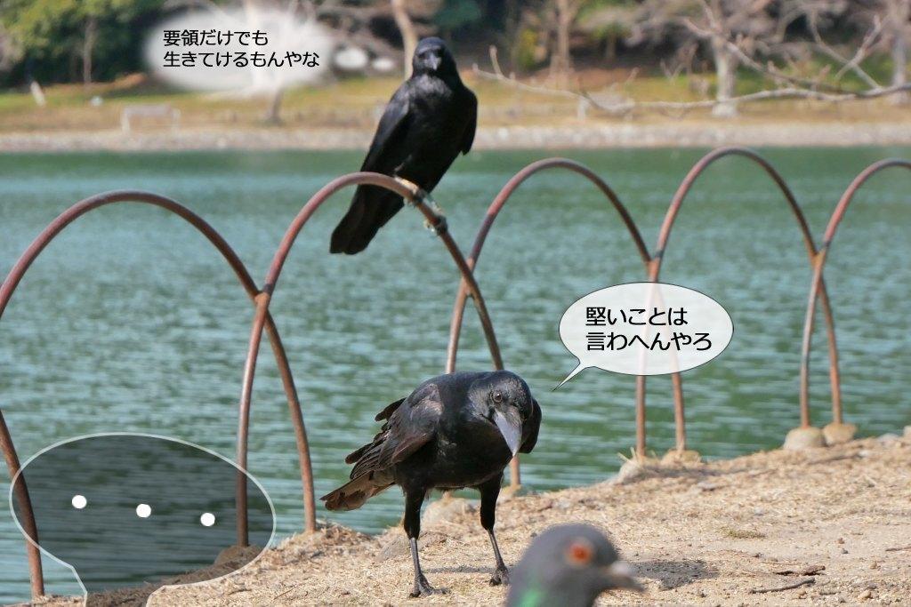b0174191_20124823.jpg