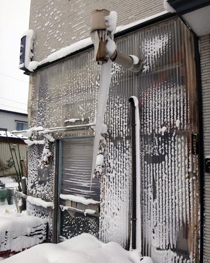 吹雪の朝のシジュウカラ、スズメの餌台など♪_a0136293_1632527.jpg