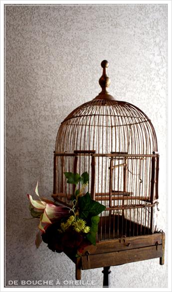 cage à oiseaux 古い鳥かご バードケージ _d0184921_12165223.jpg
