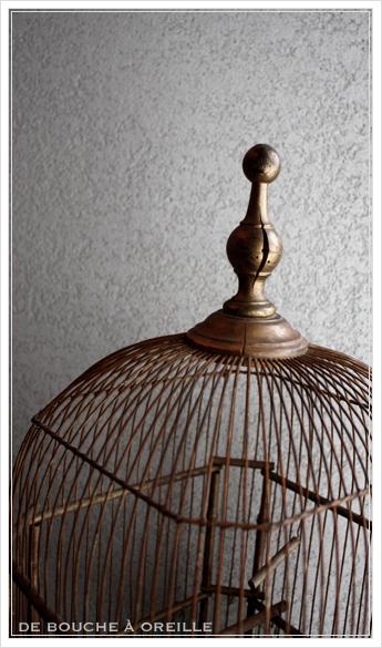 cage à oiseaux 古い鳥かご バードケージ _d0184921_12491181.jpg