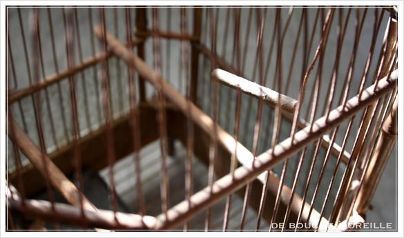 cage à oiseaux 古い鳥かご バードケージ _d0184921_13341088.jpg